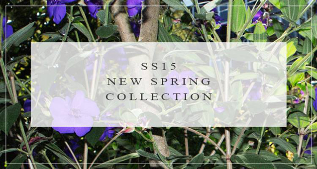 SS15 trends